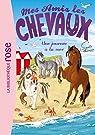Mes amis les chevaux, tome 14 : Une journée à la mer par Thalmann