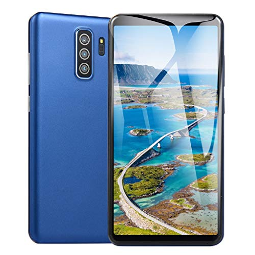 (2019 New Unlocked Mobile Smart Phone5.8 inch Dual HD Camera Android 6.0 1G+4G GPS 3G Smart Call Phone Suitable for Facebook (Blue))