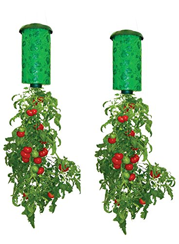 Allstar Innovations Topsy Turvy Upside-Down Tomato Planter (Best Cherry Tomatoes For Hanging Baskets)