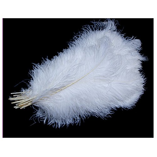 UPC 704298000819, Onepalace LOT Wholesale Bulk Ostrich Bleach White White Deluxe Ostrich Plumes Long Wedding Eiffel Tower Feathers (20pc(9-14 Inch Length))