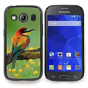 """For Samsung Galaxy Ace Style LTE/ G357 Case , Pájaros Primavera floral de la naturaleza de verano Pico"""" - Diseño Patrón Teléfono Caso Cubierta Case Bumper Duro Protección Case Cover Funda"""