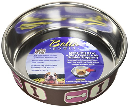 Bowl Dog Bowl Bella (Loving Pets Cosmopolitan Bella Bowl, Medium, Pink)