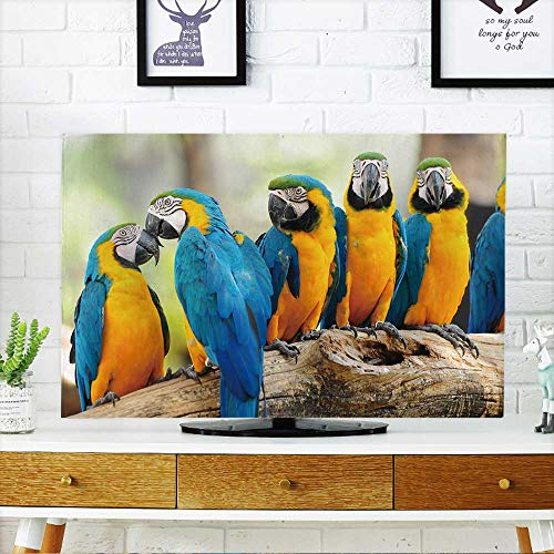 - PRUNUS tv Protective Cover Group of Colorful Macaw on The Tree tv Protective Cover W19 x H30 INCH/TV 32
