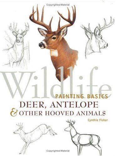 Deer, Antelope and Other Hooved Animals (Wildlife Painting Basics) by Cynthie Fisher (2001-03-01)