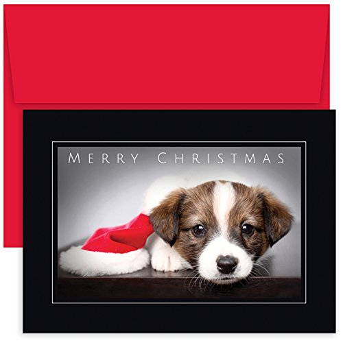 Dog Christmas Cards Envelopes - Masterpiece Studios Holiday Collection Boxed Christmas Cards, Puppy, 18 Cards/18 Envelopes