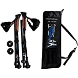 York Nordic Travel Folding Walking & Hiking Poles - 15.5 in with Rubber Feet, Baskets, and Bag
