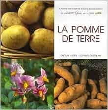 La pomme de terre (French Edition): Chantal de Rosamel: 9782732886763