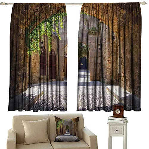 Warm Curtain Tuscan Ancient Italian Street in a Small Provincial Town of Tuscan Italy European Light Blocking Drapes with Liner W55 xL45 Brown Green Grey ()