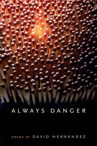 Always Danger (Crab Orchard Award Series in Poetry)
