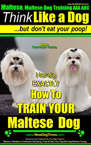 Maltese, Maltese Dog Training AAA AKC: Think Like a Dog ~ But Don'T Eat Your Poop! | Maltese Breed Expert Training: Here's EXACTLY How To TRAIN Your Maltese Dog