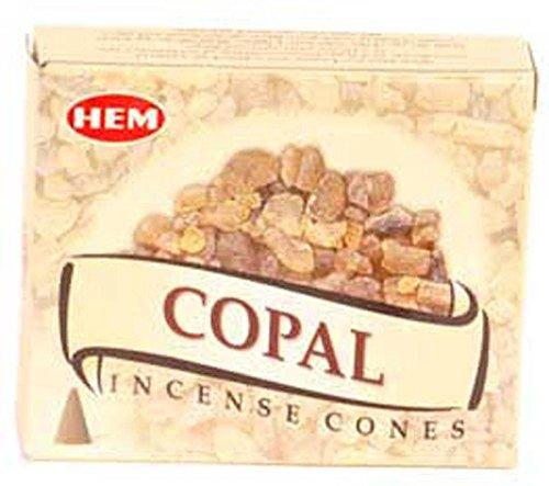 Home Fragrance Incense HEM Copal Prayer Meditation Cone 10pk