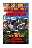 Bushcraft and Survival Essentials 20 Tricks You Need To Know To Survive In The Wilderness: bushcraft, bushcraft outdoor skills, bushcraft carving, ... Survival Books, Survival, Survival Books)