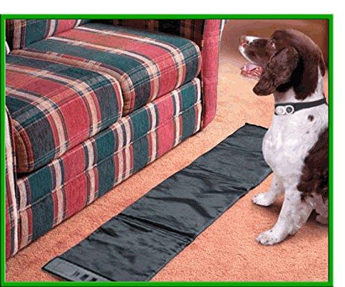 Superior With Sofa Scram Design
