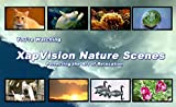 XapVision Nature Scenes DVD