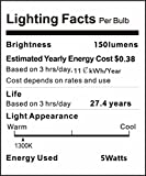 LAKES LED Flame Bulb, 1300K True Fire Color, Pack of 1 Unit