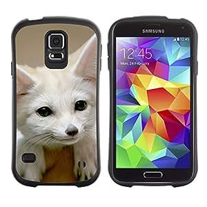 Exotic-Star Hybrid Heavy Duty Shockproof iFace Fundas Cover Cubre Case para Samsung Galaxy S5 V SM-G900 ( Fennec Fox lindo )