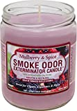 Odor Exterminator Candle Mulberry and Spice 13oz by Smokers Candle
