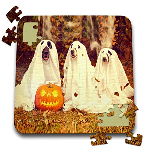 Sandy Mertens Halloween Designs - Dogs in Ghost Costumes with Jack o Lantern Image, 3drsmm - 10x10 Inch Puzzle (pzl_290224_2)]()