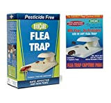 Biocare 11 Indoor Electric Flea Trap with Lightbulb and a Bonus Pack of 3, White