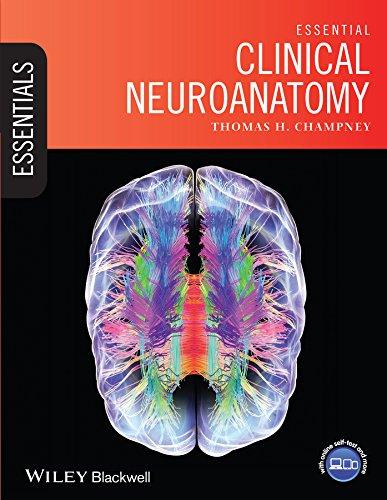 Essential Clinical Neuroanatomy (Essentials) Pdf