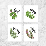 Herb Poster Kitchen 4 Prints Art Cooking Wedding Gift Sign 8 inches x 10 inches 8x10