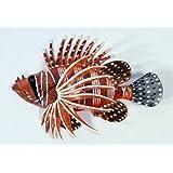"Handpainted Tropical Lion Fish Replica Wall Mount Decor Plaque 8"""