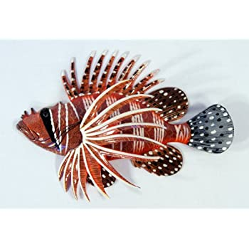 Handpainted tropical lion fish replica wall mount decor plaque 8 home kitchen for Decor star 005 ss