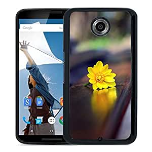 New Beautiful Custom Designed Cover Case For Google Nexus 6 With Romantic Bench Phone Case