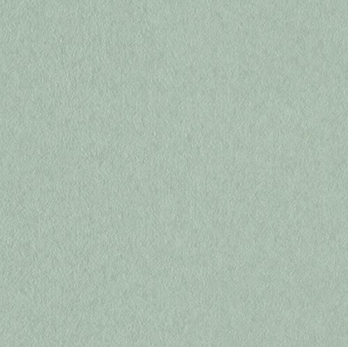 サンゲツ 壁紙40m キッズ  グリーン 織物 FE-4004 B06XKD8HLL 40m|グリーン2
