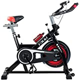 Tauki Indoor Upright Exercise Bike W/ LCD Monitor Cycling Bike for Health and Fitness