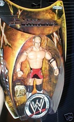 WWE Ruthless Aggression Series 17 Hardcore Holly Action Figure WWF - Wwf Wwe Jakks Figure