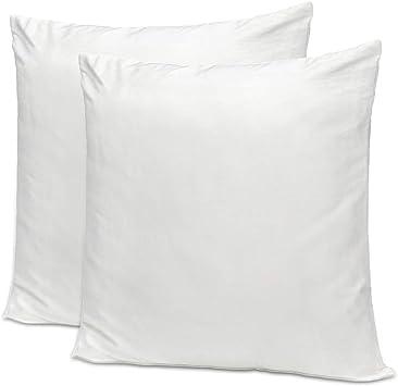 Amazon.com: NKTM - Fundas de almohada con cremallera, 100 ...