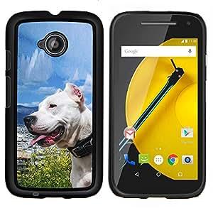 EJOOY---Cubierta de la caja de protección para la piel dura ** Motorola Moto E2 E2nd Gen ** --Soleado Sea Dog Océano Pit Bull Terrier mascotas