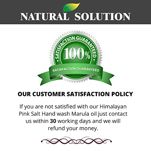 Amazon.com: Natural Solution Body Wash, Natural Honey with Himalayan Pink Salt, Nutrition & protection, by Dr.Barbara Hendel, 17 oz Each (3-Count): Beauty