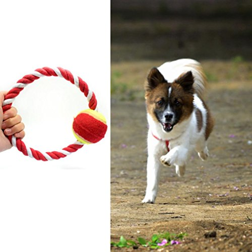 Cotton Loop Tug (Iuhan 1PC Dog Throw Tug Pull Chew Toy Ball Rope New Dog Toy Cotton Rope Bounce Ball (Color Random))