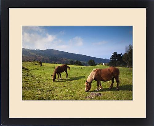 Framed Print of Spain, Basque Country Region, Guipuzcoa Province, Hondarribia, horses along the by Fine Art Storehouse