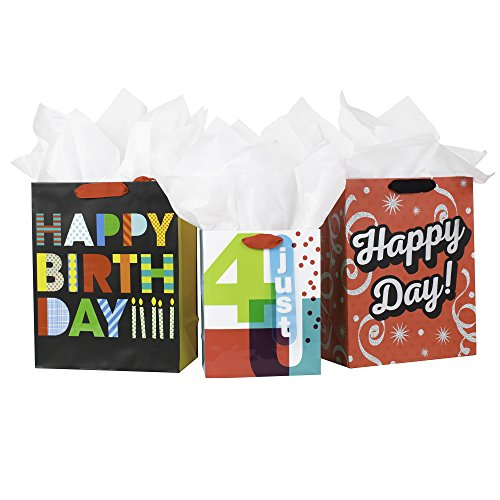 Hallmark Birthday Gift Bag Assortment with Tissue Paper (Pack of 3: 2 Large 13, 1 Medium 9) Happy Day