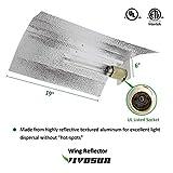 VIVOSUN Hydroponic 600 Watt HPS MH Grow Light Wing