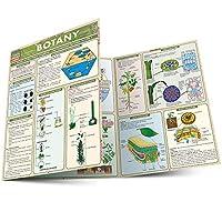 Botany (QuickStudy Academic)