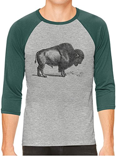 Unisex Mens American Buffalo Wild Bison Print 3/4 Sleeve Grey Baseball T-Shirt, Green Sleeves, (Austin Baseball)