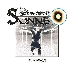 Aiwass (Die schwarze Sonne 10)