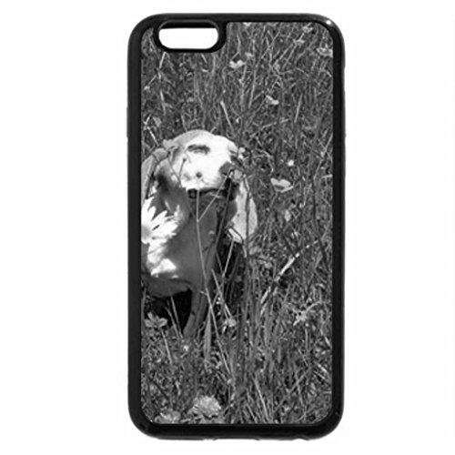 iPhone 6S Case, iPhone 6 Case (Black & White) - Summer dog