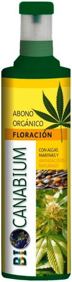 Floracion abono organico para canabium