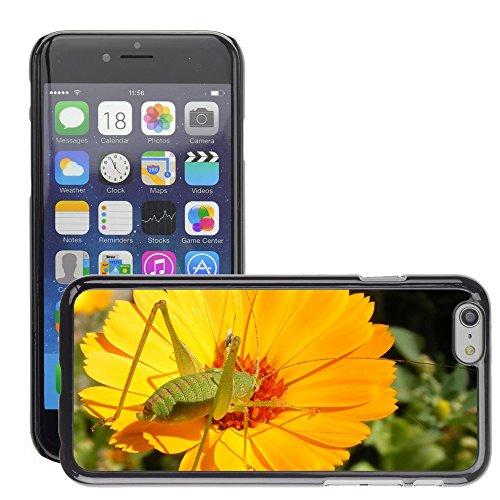 "Bild Hart Handy Schwarz Schutz Case Cover Schale Etui // M00133319 Caelifera Nahaufnahme Blume Grasshopper // Apple iPhone 6 PLUS 5.5"""