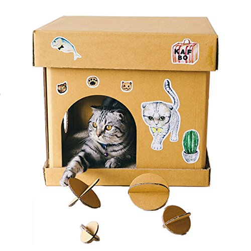 Ice Climbers Halloween Costume (Sansukjai Cat House Box Cube Eco Friendly 40 x 40 x 40 cm DIY)