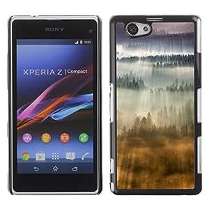 Be Good Phone Accessory // Dura Cáscara cubierta Protectora Caso Carcasa Funda de Protección para Sony Xperia Z1 Compact D5503 // Awe Inspiring Clouds Flying Sun