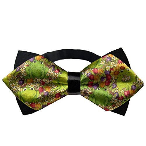 YEAHSPACE Mens silk Bowtie Gift Frogs Colorful Bow Ties (Brothers Silk Brooks Tie)