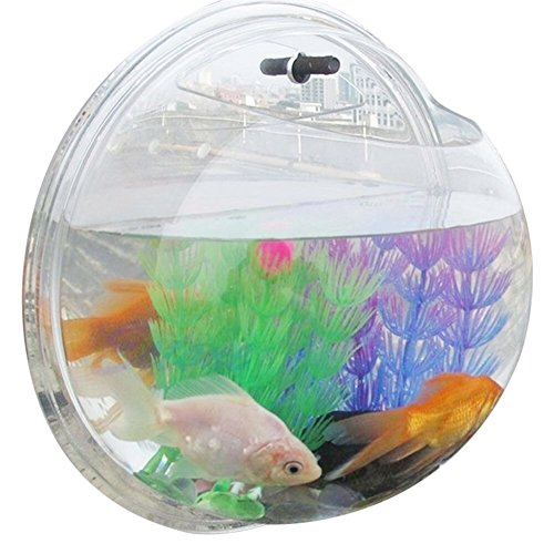 bellagione-wall-mounted-fish-bowl-mini-bubble-aquarium-water-plant-pot-wall-hanging-fish-tank-for-ho