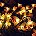WONFAST Solar Bee String Light, Waterproof 23FT/7M 50 LED Bumble Honey Bee Solar Powered 8 Modes Fairy Decorative String Lights for Outdoor Patio Garden Gate Yard Party Wedding Christmas