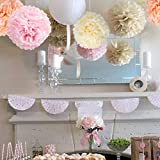 Paper Flowers - Fluffy Tissue Paper Pom Poms - Hanging Flower Ball for Baby Shower Decorations, Wedding Décor, Birthday Party Celebration - 25 Pcs